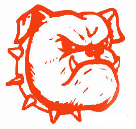 lexington isd mascot
